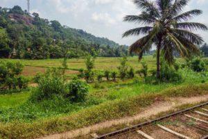 Nádherná srílanská príroda