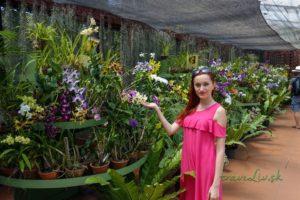 Šťastná medzi orchideami