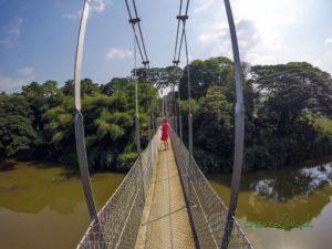 Visutý most nad riekou Mahaweli