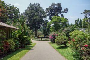 Botanická záhrada Peradeniya