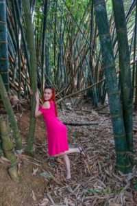 Bambusová záhrada