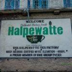 Továreň na čaj Uva Halpewatte