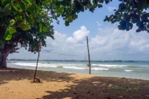Pláž v Galle