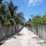 Rasdhoo street